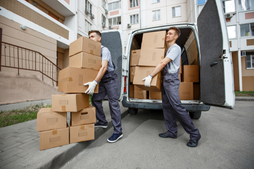 removals and storage service